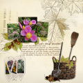 Fall-Spring_2