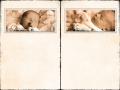 blz 22-23