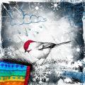 Little Winterbird
