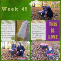 Project Life Week 45