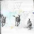adventure of the zebras