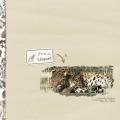 I saw a leopard