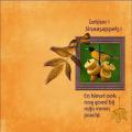 Sept-2016- Lekker , Sinaasappels !