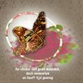 De filosofie van een vlinder