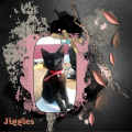 Nov. 2017 – Katertje Jiggles