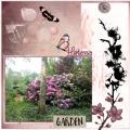 Juni 2018-Hortensia