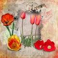 0518-wordart challenge Tulpen