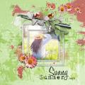Sunny Summery Days