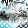 Zebra Zoo
