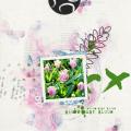 Bloom - Week 6