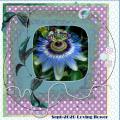 Sept.2020 Mask-Loving flower...
