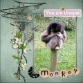 April 2020 you'r a Unique monkey