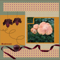 Nov.2020 - Mushroom