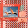 Juni 2021 Flamingo's , 1e lo