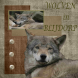 wolven in blijdorp