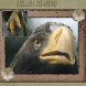 Stellers zeearend